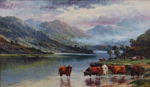 Loch Elk
