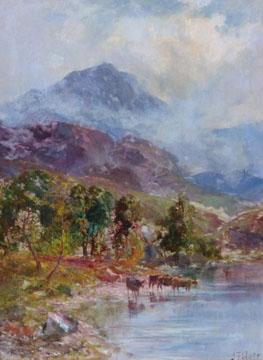 Cattle watering by a loch