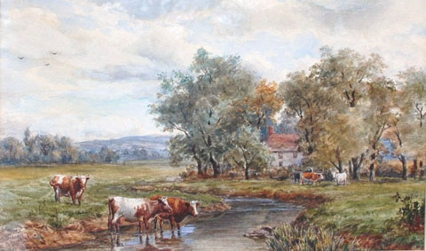 Shorthhorn Cattle by a River