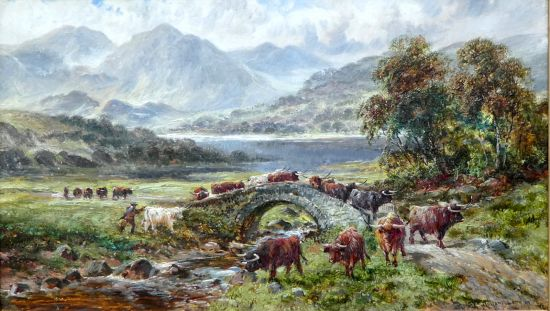 Droving highland cattle over a bridge