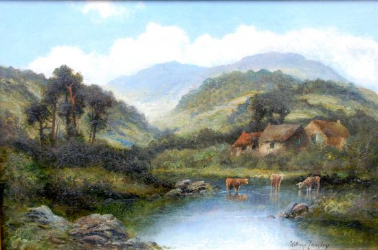 Highland Cattle watering before a Croft