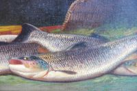 The Salmon Catch and Creel