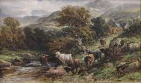 Highland cattle by a stream