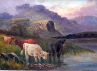 Highland cattle watering by a loch